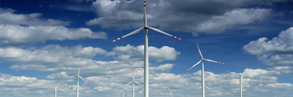 Alternative Pure Energy | Energie Verde | Panouri Solare | Fotovoltaice | Eoliana | Turbina Hidro | Casa Verde | Stalpi Solari Fotovoltaici Iluminat Public